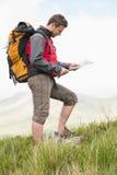 Knappe wandelaar die met rugzak bergopwaartse lezing loopt een kaart Royalty-vrije Stock Fotografie