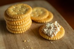 Knapperige Crackers met Tuna Spread royalty-vrije stock foto's