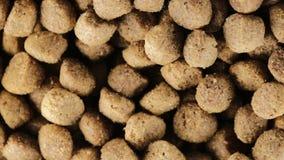 Knapperige koekjes voor honden stock videobeelden