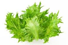 Knapperige salade royalty-vrije stock fotografie