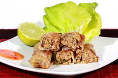 Knapperige springrolls op schotel met salade stock afbeelding