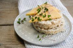 Knaprigt bröd med ost och mikro-gräsplaner royaltyfria bilder