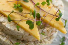 Knaprigt bröd med ost och mikro-gräsplaner arkivfoto