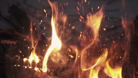 Knastra flammande flamma för vedträ i hög av brasan arkivfilmer