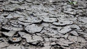 knastrad mud Royaltyfria Foton