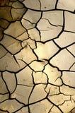 knastrad mud Royaltyfri Bild