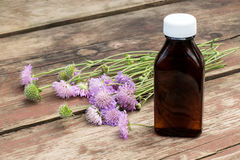 Knautia arvensis and pharmaceutical bottle. Medicinal plant Knautia arvensis, commonly known as field scabious and brown pharmaceutical bottle on old wooden Stock Photos