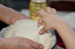 Kneads dough Stock Images