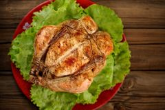 Knechtschaft shibari briet Huhn mit Salatblättern auf roter Platte O stockfotos