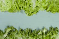 knedle tła jedzenie mięsa bardzo wiele Piękna rama ziele - sałatkowi frillis i pozwalał Obraz Royalty Free
