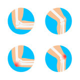 Knee and elbow vector illustration. Royalty Free Stock Image