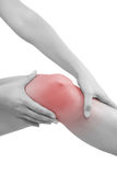 Knee injury. Stock Image