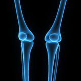 Knee joints Stock Images
