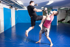 Knee kick during mixed martial art training Stock Photography