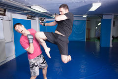Knee kick during mma training Stock Images