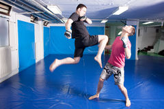 Knee kick during mma training Royalty Free Stock Images