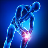 Knee pain. 3d rendered illustration of Knee pain of male isolated in blue Royalty Free Stock Image