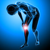Knee pain of Female Stock Image