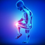 Knee pain of male in blue. 3d rendered illustration of Anatomy of knee pain in male Stock Photography
