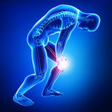 Knee pain of male isolated in blue. 3d rendered illustration of Knee pain of male isolated in blue Royalty Free Stock Photos