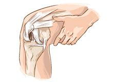 Knee. A vector illustration of knee Royalty Free Stock Photography