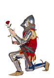 Kneeled knight. Kneeled armored knight with red rose Stock Images