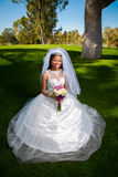 Kneeling African American Bride Royalty Free Stock Images
