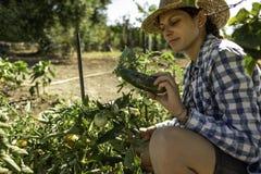 Kneeling farmer woman gathering in the vegetable garden
