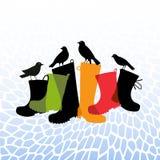 Kängor och fåglar på min trädgårds- uteplats Arkivfoto