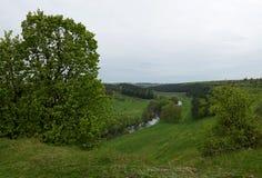 Kniaź krajobraz w wiośnie Pola zakrywający z zieloną trawą na bankach Rzeczny linia horyzontu fotografia stock