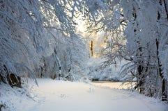 Knie-tiefer Schnee auf der Straße Stockfotos