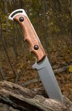 Knife. Hunting knife in an autumn forest in a log stock images