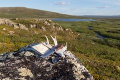 Knife, compass, map and deer horn on the rock stock photo