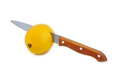 Knife cuts lemon. Stock Images
