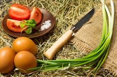 Knife for cutting vegetables. Knife and vegetables on the hay. Rural style Stock Images