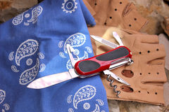 Knife folding. Penknife for the hidden carrying, as a collecting subject Stock Photo