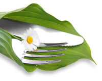Knife and fork in green leaf Royalty Free Stock Image