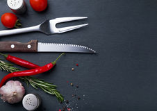Knife and fork for meat and spices Royalty Free Stock Image