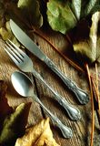 Fork knive and spoon royalty free stock photo