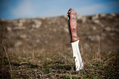 Knife in the ground Stock Image