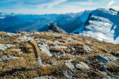 Knife in the mountain Stock Photography