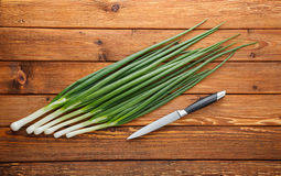 Knife and onions Stock Images