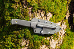 Knife with the plastic kydex sheath in the forest background. Survival and bushcraft concept royalty free stock image