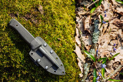Knife with the plastic kydex sheath in the forest background. Survival and bushcraft concept stock photography