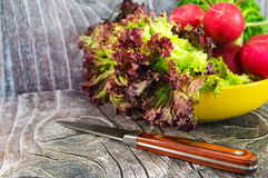 Knife with radish and salad. Green salad and pepper in the shape of digit 8 for Woman's day royalty free stock image