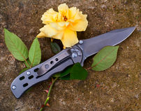 Knife and rose Royalty Free Stock Photo