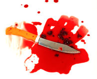 A knife smeared with blood. Royalty Free Stock Photo