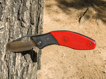 Knife stuck in tree Stock Photo
