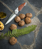 Knife and walnuts. On black stone floor Royalty Free Stock Photo
