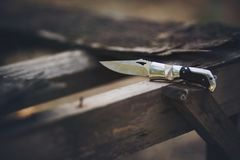 Knife on wood. Pocket knife on wood.nature stock image